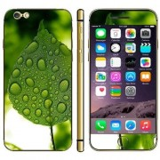 iPhone 6(S) (4.7 inch) Skin sticker leaves Pattern