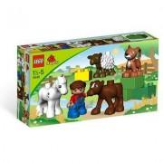 Lego 5646 - Duplo Ville : Les Bébés Animaux De La Ferme