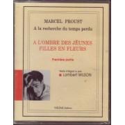 A La Recherche Du Temps Perdu / A L'ombre Des Jeunes Filles En Fleur - Livres Audio Lu Par Lambert Wilson - 1ère + 2ème + 3ème + 4ème Parties - 4 Coffrets De 2 Cassettes Audio