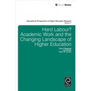 Hard Labour? Academic Work and the Changing Landscape of Higher Education by Tanya Fitzgerald