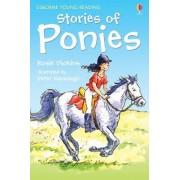 Stories of Ponies by Rosie Dickins