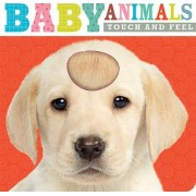 Touch and Feel Baby Animals by Thomas Nelson