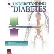 Understanding Diabetes Flip Chart by Scientific Publishing