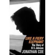 Like A Fiery Elephant by Jonathan Coe
