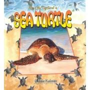 The Life Cycle of a Sea Turtle by Bobbie Kalman