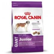 Royal Canin Giant Junior - Výhodné balení 2 x 15 kg