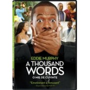 A THOUSAND WORDS DVD 2012