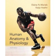 Human Anatomy & Physiology Plus Masteringa&p with Etext -- Access Card Package by Elaine N Marieb