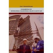 Fundamentals of International Occupational Health And Safety Law by Peter Barnett-Schuster