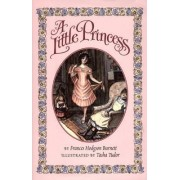 The Little Princess by Frances Hodgson Burnett