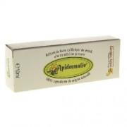 Apidermaliv Balsam Buze 10ml Complex Apicol