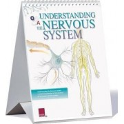 Understanding the Nervous System Flip Chart by Scientific Publishing