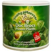 Doc Brocs Power Plants - pudra pentru energizarea organismului
