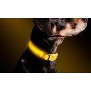 Collare regolabile luminoso a led per cani e gatti vari colori e misure