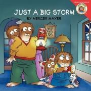 Little Critter: Just a Big Storm by Mercer Mayer
