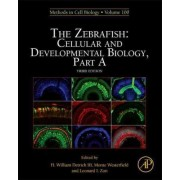 Zebrafish: Cellular and Developmental Biology: Part A by H. William Detrich