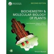 Biochemistry and Molecular Biology of Plants by Bob B. Buchanan