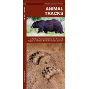 Animal Tracks: An Introduction to the Tracks & Signs of Familiar North American Species