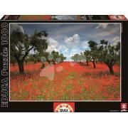 Educa Puzzle Genuine Poppy Field 1000 de piese 15992 colorat
