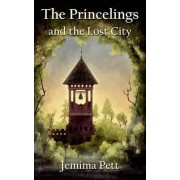 The Princelings and the Lost City by Jemima Pett