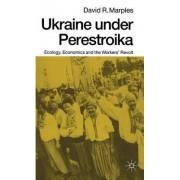 Ukraine Under Perestroika by David R. Marples