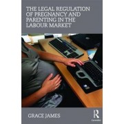 The Legal Regulation of Pregnancy and Parenting in the Labour Market by Grace James
