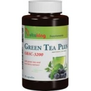 VITAKING GREEN TEA PLUS 90 DB