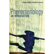 Phenomenology - an Introduction by Stephan Kaufer