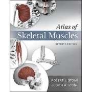 Atlas of Skeletal Muscles by Judith A. Stone