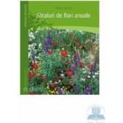 Straturi De Flori Anuale - Herta Simon