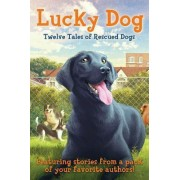 Lucky Dog by Kirby Larson