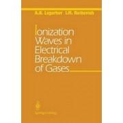 Ionization Waves in Electrical Breakdown of Gases by A.N. Lagarkov
