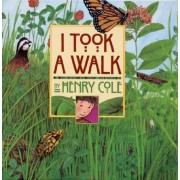 I Took a Walk by Henry Cole
