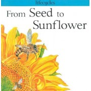 From Seed to Sunflower by Gerald Scrace Legg
