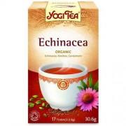 Yogi Tea Herbata ECHINACEA BIO (17x1,8g) - YOGI TEA
