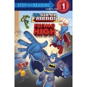 DC Super Friends: Flying High by Nick Eliopulos