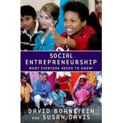 Social Entrepreneurship by David Bornstein