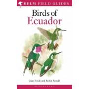 Vogelgids Birds of Ecuador | Christopher Helm
