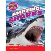 Amazing Sharks