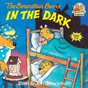 The Berenstain Bears in the Dark by Stan Berenstain