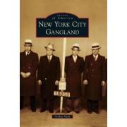 New York City Gangland by Arthur Nash