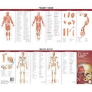 Anatomical Chart Company's Illustrated Pocket Anatomy: The Muscular & Skeletal Systems Study Guide by Anatomical Chart Company