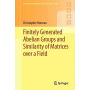 Finitely Generated Abelian Groups and Similarity of Matrices Over a Field by Christopher Norman