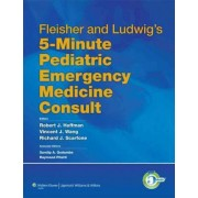 Fleisher and Ludwig's 5-minute Pediatric Emergency Medicine Consult by Robert J. Hoffman
