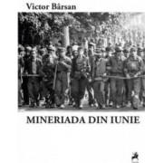 Mineriada din iunie - Victor Barsan