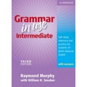 Grammar in Use Intermediate Student's Book with Answers by Raymond Murphy