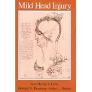 Mild Head Injury by Harvey S. Levin