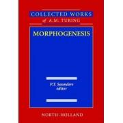 Morphogenesis by Alan Mathison Turing