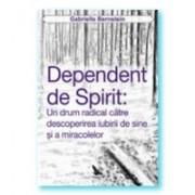 Dependent de spirit: O cale radicală pentru a descoperi iubirea de sine și miracolele