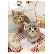 Epoch Kitty cat 759 pcs Jigsaw Puzzle We are going to help you right meow 38x53cm 57-506 from Japan